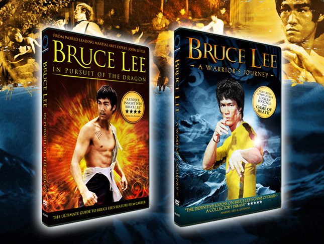 bruce in pursuit of the dragon a warrior's journey