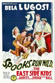 spooks-run-wild
